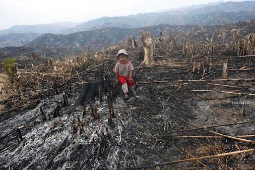 deforestazione bolivia.jpg