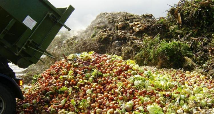 lotta-allo-spreco-alimentare.jpg